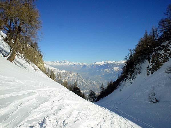 Vue sur le Valais et les Alpes depuis les hauts d'Ovronnaz.