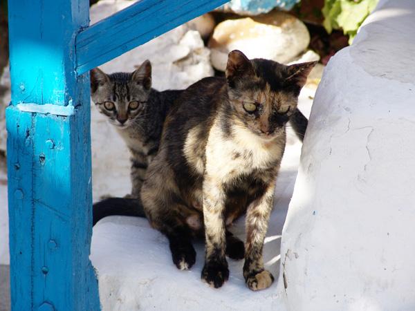 Au village d'Antiparos, île soeur de Paros, 2007.