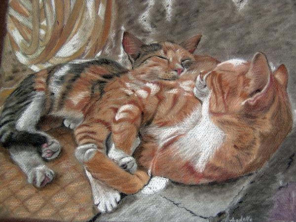 Sieste de chats, pastel, 42x30cm, d'après une photo de Jacques Lauber prise dans les Cyclades.