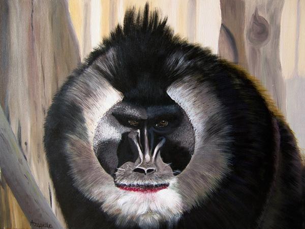 Drill, acrylique sur toile, 50x40 cm, d'après un cliché du batteur et photographe animalier Pierre de Chabannes, Marquis de La Palice (<a href=http://www.photozoo.org target=_new>www.photozoo.org</a>).