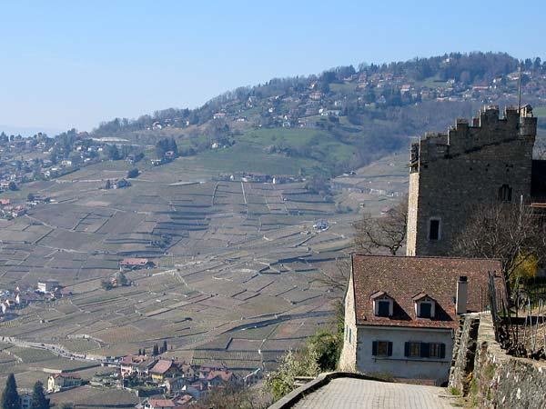Commune de Puidoux: la Tour de Marsens.