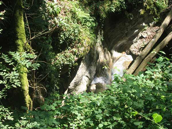 Les Gorges du Chauderon, juste au-dessus de Montreux: une nature sauvage et préservée.