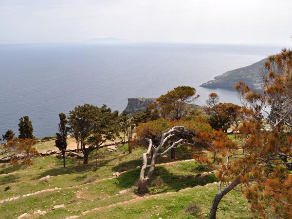 Kéa (Tzia), Cyclades, avril 2012.