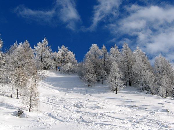 Vision hivernale entre La Fouly et Ferret, au Val Ferret (Valais)...