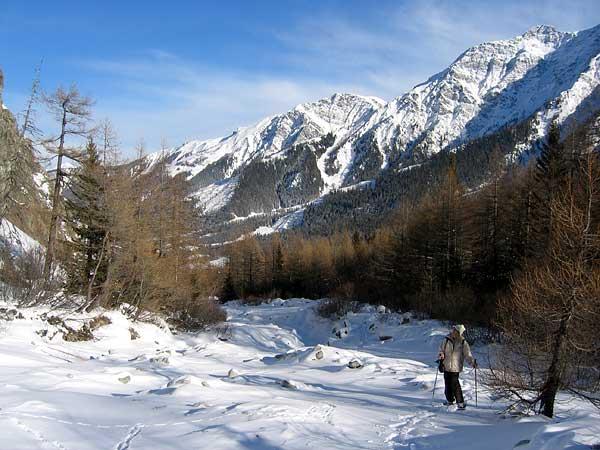 Promenade à raquettes dans une nature sauvage à La Fouly, au Val Ferret (Valais)...