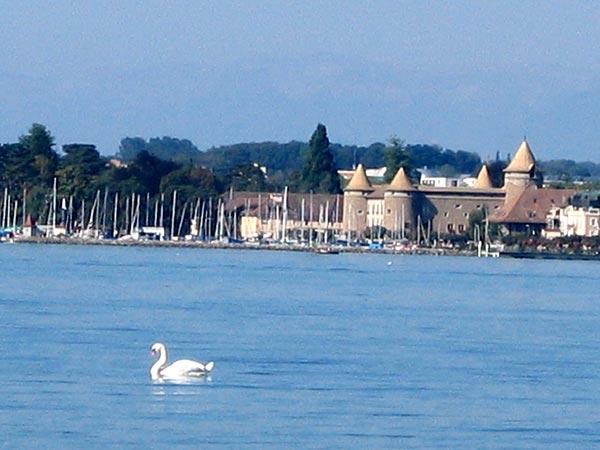 Vue sur le port et le Château de Morges.