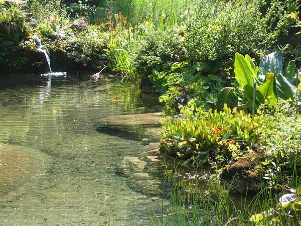 Le jardin alpin La Thomasia, à l'entrée du Vallon de Nant.