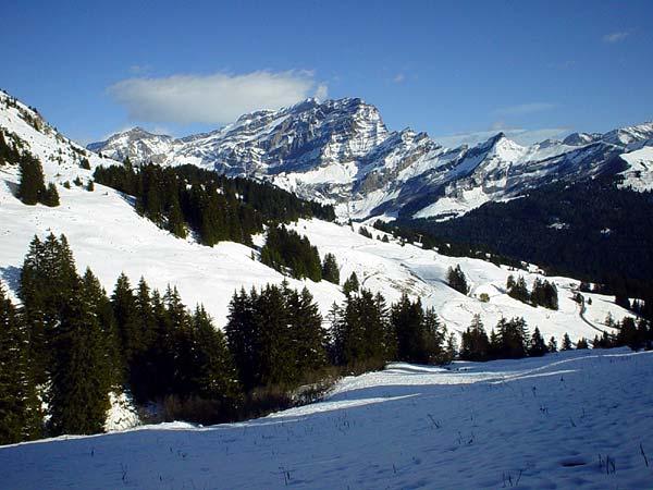 Vue sur les Préalpes depuis Bretaye, au-dessus de Villars.