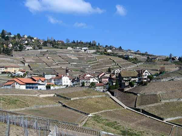 Riex, village vigneron de Lavaux, printemps 2003.