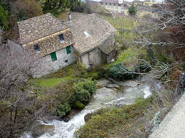 Au village de Rivaz, en Lavaux.