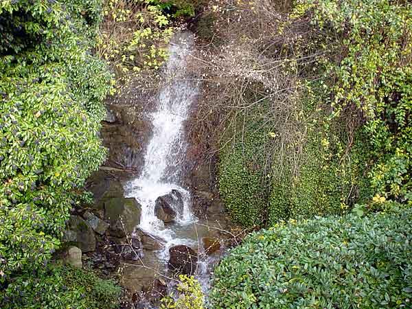 Lavaux: quelque part entre le village de Rivaz et le bord du lac.