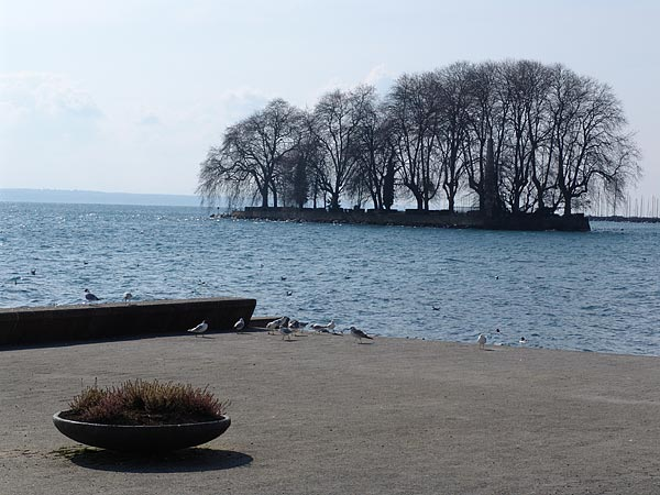 Rolle: vue sur l'île de La Harpe depuis les quais.