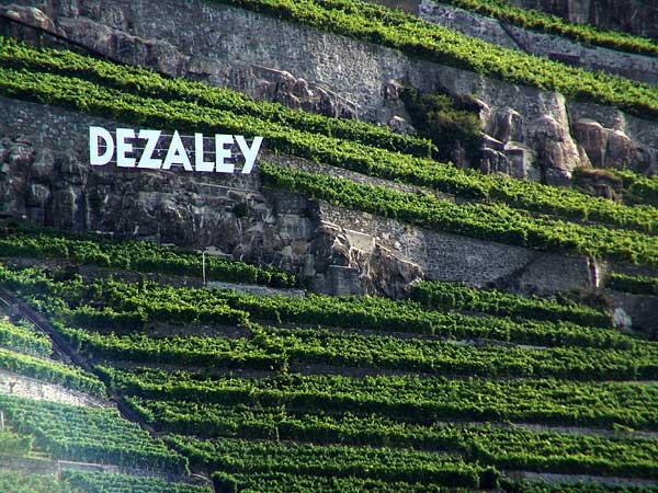 Quand le Dézaley se la joue Hollywood, août 2004.