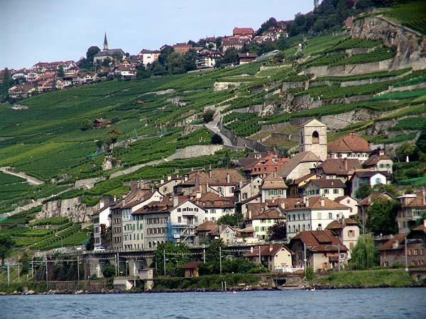 St-Saphorin vu du lac, août 2004.