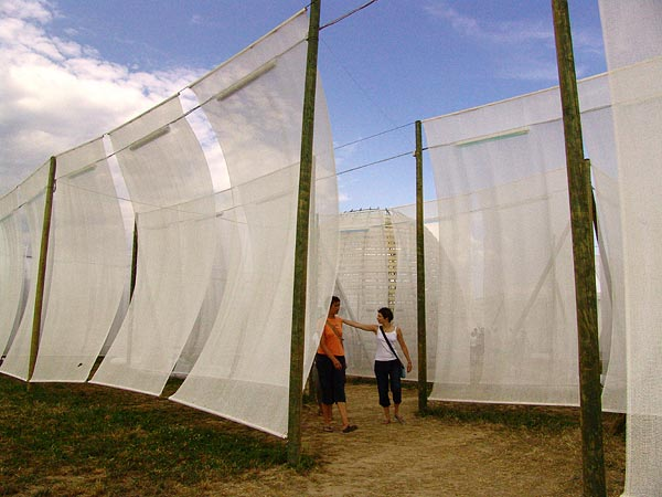 Ambiances du 31e Paléo Festival, 18-23 juillet 2006.
