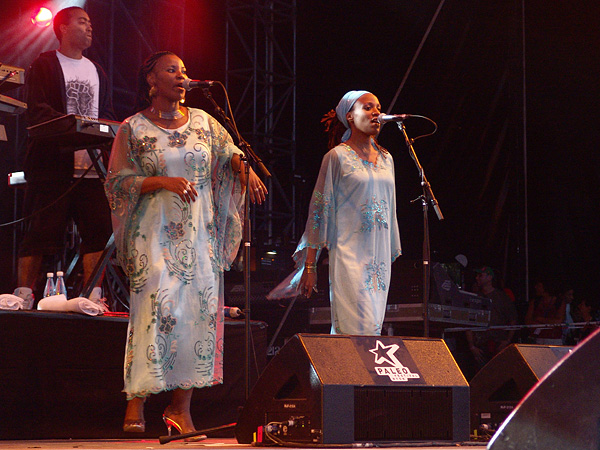 Paléo Festival 2008: Tiken Jah Fakoly, jeudi 24 juillet 2008, Grande Scène.