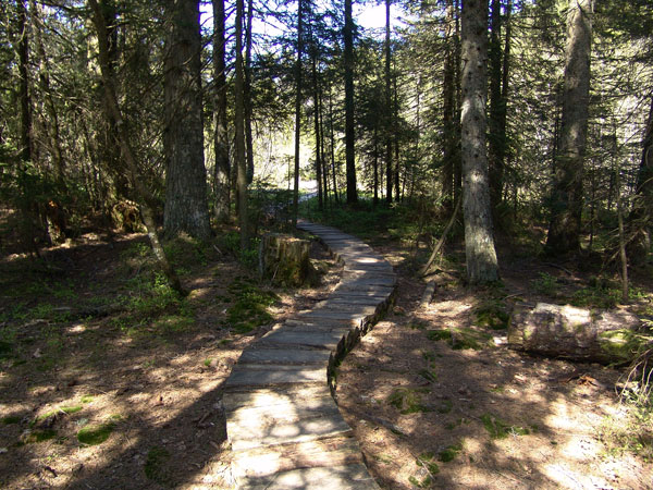 Quelque part dans la réserve naturelle des Tenasses, aux Pléiades, mai 2010.