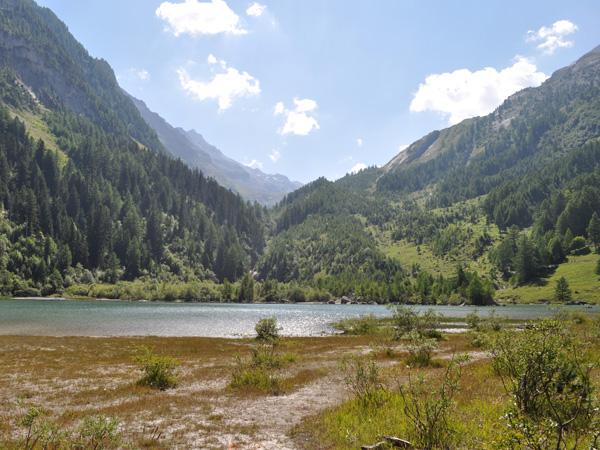 Vue sur le lac de Derborence, au Valais, août 2010.