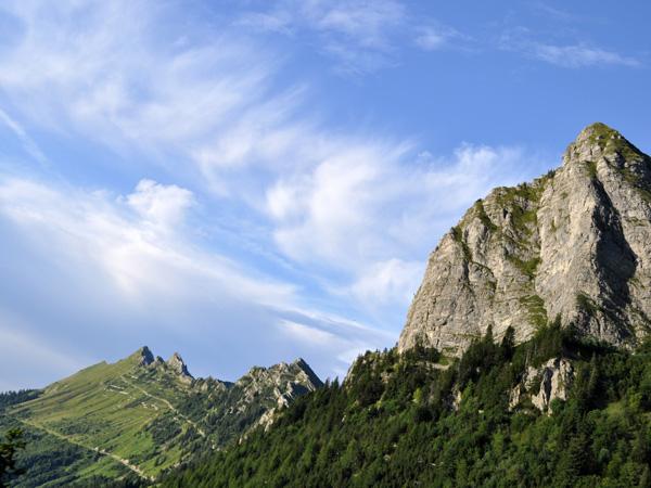 Rochers-de-Naye, août 2010. Vues spectaculaires sur Préalpes, Alpes et Léman, marmottes pas farouches, fleurs de tous les continents et choucas acrobates à 2045m d'altitude...