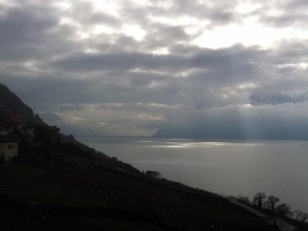 Lumières d'hiver en Lavaux, Epesses, février 2011.