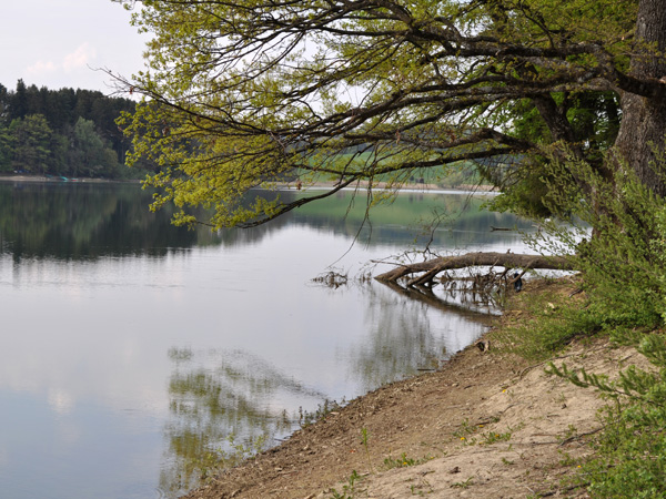 Balade autour du lac de Bret, juste au-dessus de Puidoux-Chexbres, 23 avril 2011.