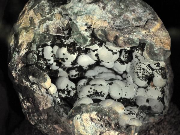 Le Trésor des Fées, musée minéralogique à l'entrée des Grottes de Vallorbe, 30 avril 2011.