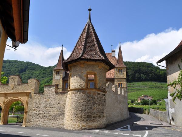 Le village viticole de Cressier, entre le lac de Neuchâtel et le lac de Bienne (région des Trois-Lacs), 4 juin 2011.