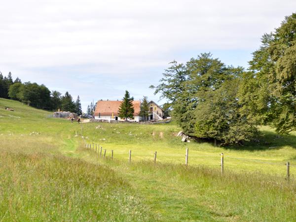 Une balade du côté du Soliat et du Creux-du-Van, 24-25 juin 2011.