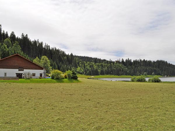 Promenade à la vallée de La Brévine et au lac des Taillères, Jura neuchâtelois, 25 juin 2011.