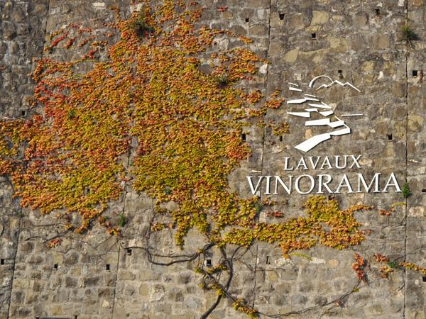 Rivaz en Lavaux, près du Vinorama, septembre 2011.