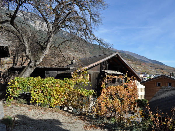 Village vigneron de Salquenen (Salgesch), Haut-Valais, novembre 2011.