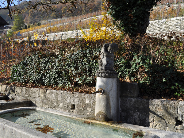 Au coeur des vignobles du lac de Bienne: le village de Twann, dans la région des Trois-Lacs, novembre 2011.