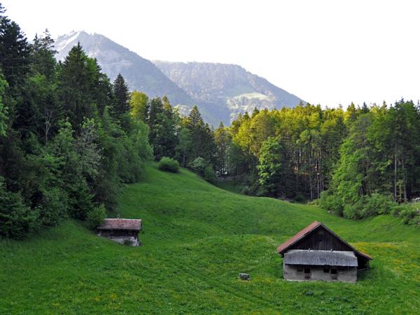 A la découverte du canton d'Obwald, mai 2012. Sur la route du col du Brünig.
