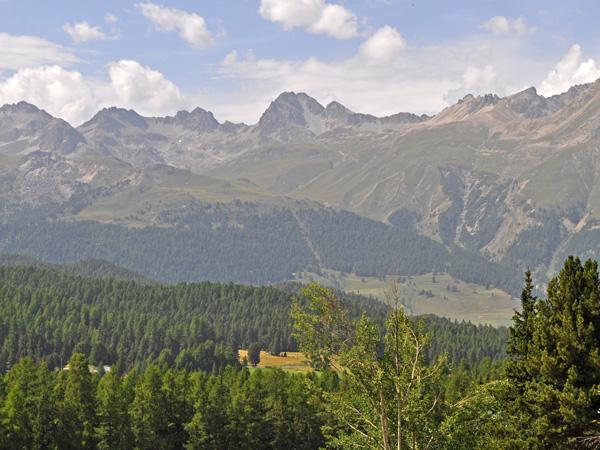 Pontresina, in Upper Engadin, Grischun (Graubünden), August 2012.