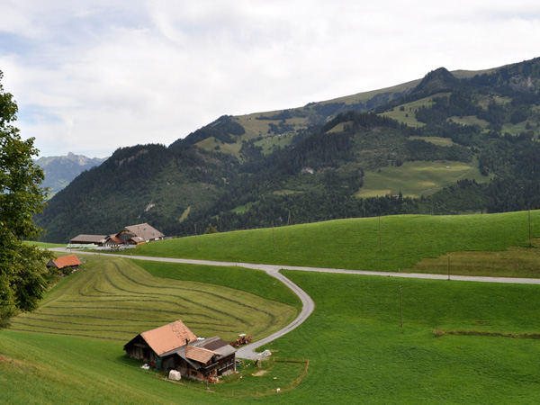 Over the Jaun Pass, connecting Gruyère (Fribourg) to Simmental (Bern), August 2012.