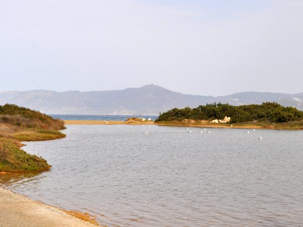 Paros, Cyclades, avril 2013. A la découverte de la péninsule du nord-est de l'île (zone protégée Natura 2000).