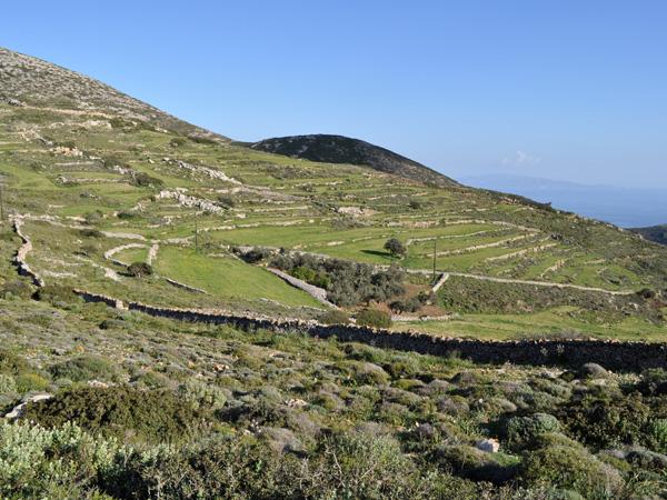 Aghii Pantes, c'est avec ses 771 m d'altitude le point culminant de Paros, l'endroit d'o&ugrave; l'on a les plus beaux panoramas sur l'&icirc;le et sur presque tout l'archipel des Cyclades.<p>On peut y monter depuis le sud et le sud-ouest de l'&icirc;le par des chemins cahoteux, mais le plus simple est de prendre la route qui y grimpe depuis Lefkes, presque enti&egrave;rement b&eacute;tonn&eacute;e et donc praticable &agrave; scooter ou en auto.<p>Pour bien profiter du spectacle, allez-y par une journ&eacute;e tr&egrave;s claire, avec une visibilit&eacute; parfaite. Et restez pour le coucher du soleil, absolument sublime! (Mais ne redescendez pas &agrave; la nuit noire, la route est assez bonne mais quand m&ecirc;me un peu difficile...)