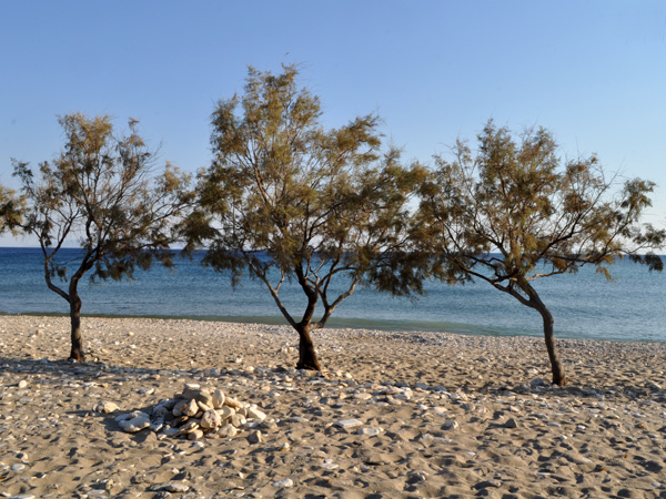 Plage de Ghlyfa, au sud de Paros, septembre 2013.
