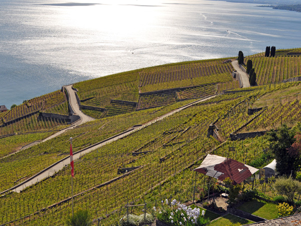 Winegrowers village of Grandvaux (Lavaux), May 2014.
