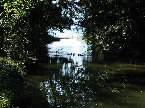 L'embouchure d'une rivière près du village de St-Prex, sur La Côte.
