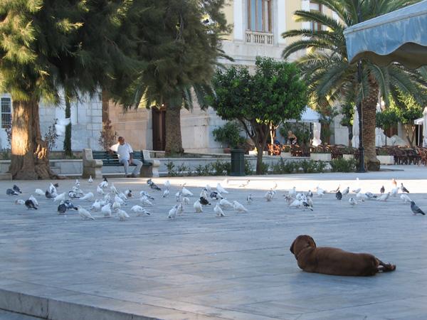 Place Miaoulis, Ermoupoli. Aspects de Syros, l'île plaque tournante et capitale administrative des Cyclades, 2006.