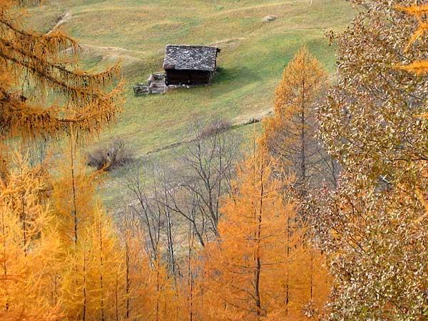 Paysage d'automne au Val d'Hérens (Valais).